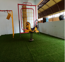 artificial-grass 25 MM